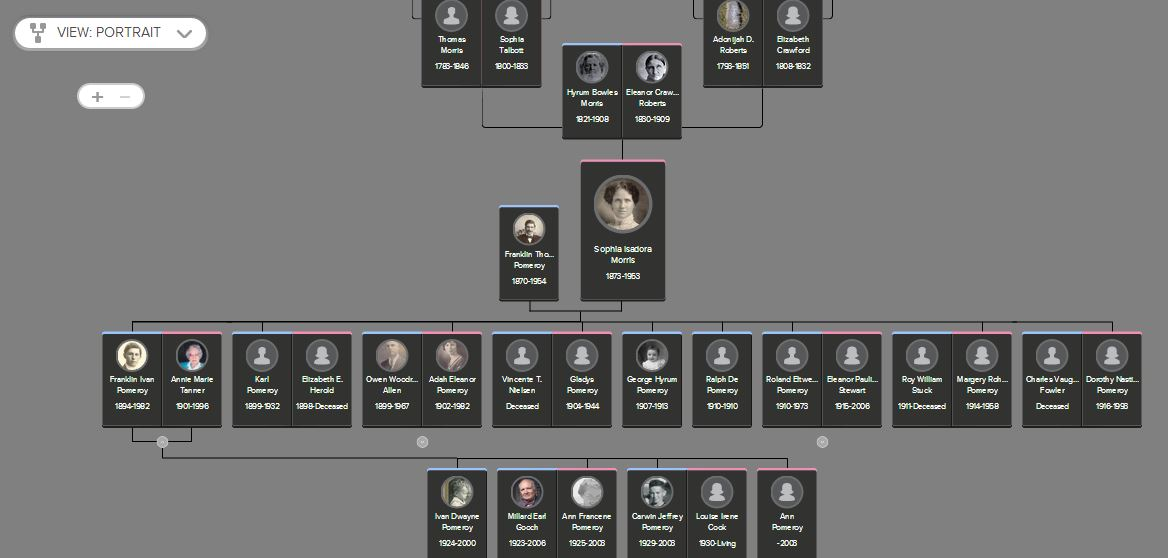 Click on up and down arrows to see additional generations of ancestors or descendants